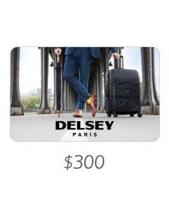 *Solo uso en Argentina* Delsey - Gift Card Virtual $300
